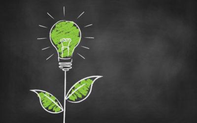 Nachhaltigkeit – was bedeutet das eigentlich?